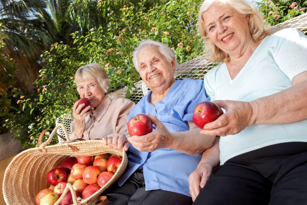 Three women friends sitting on a bench sampling freshly picked apples.